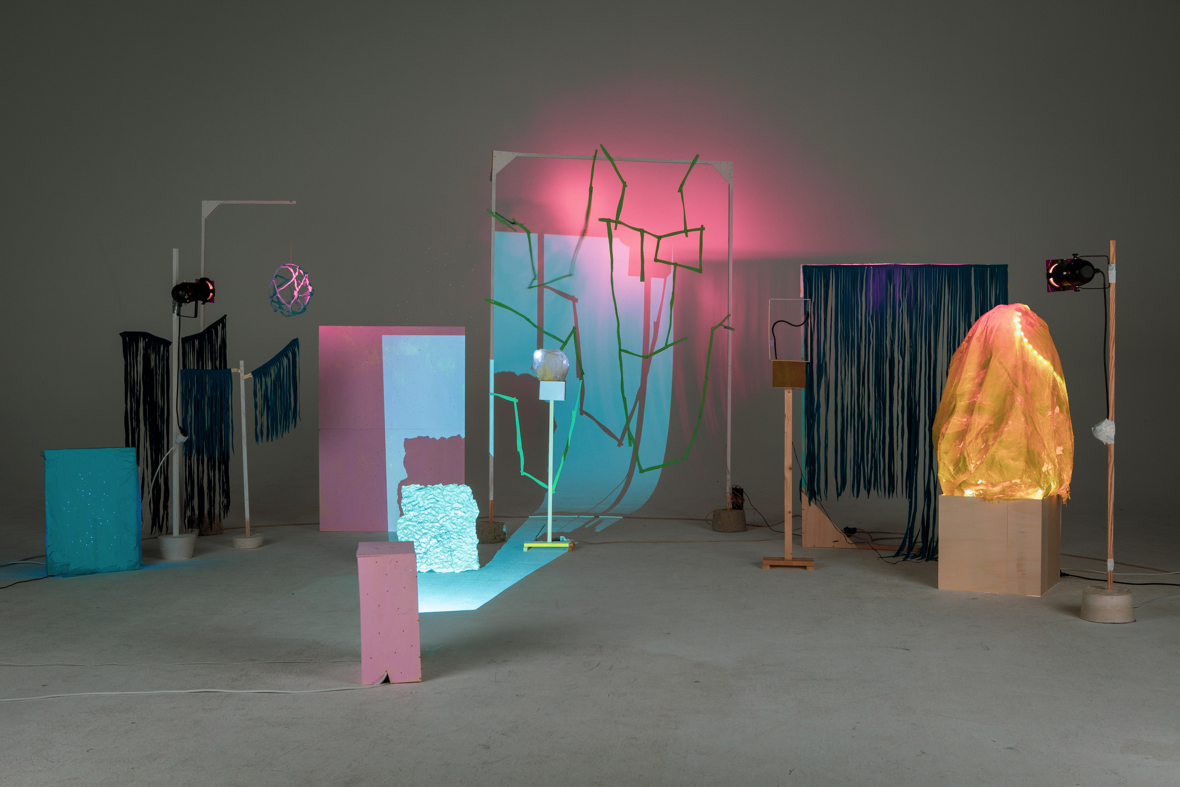Franziska Linnea Hübler / Installation